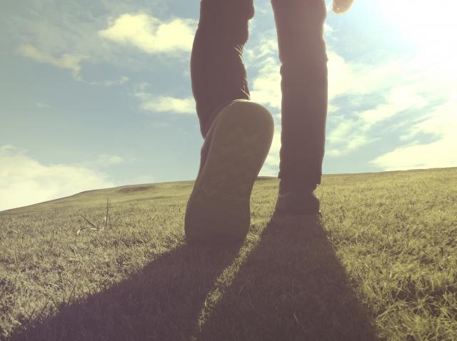 あなたの人生はあなたのもの。アドラー心理学から学ぶ「課題の分離」